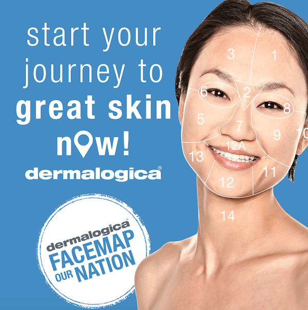 dermalogica, dermalogica skincare, dermalogica canada, face mapping, face map our nation, dermalogica face mapping, how to find out what is wrong with my skin, skincare, skin analysis, skincare professional, skin therapist