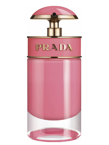 fall fragrances, new fall fragrance, best new scents for fall 2017, best new perfumes, what perfume should i try, what new perfume should i get, my burberry blush, prada candy gloss