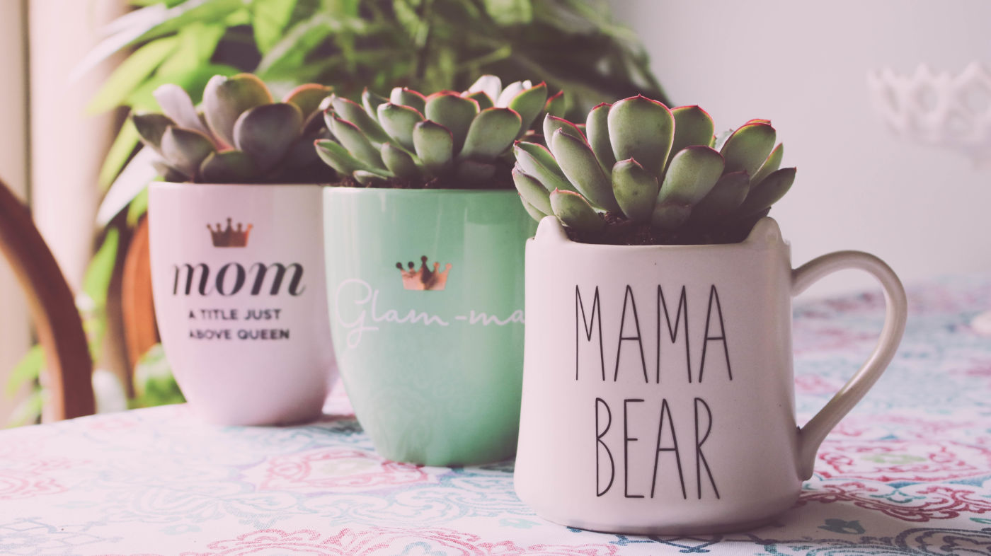 mother's day gift, mother's day gift idea, mother's day diy, how to make a mother's day present, what should i get my mom, mother's day gift guide, how to repot succulents, succulent planters, diy succulent planter, succulents in mugs, diy gift ideas, cute diy gift, cheap gift idea, DIY succulent planters