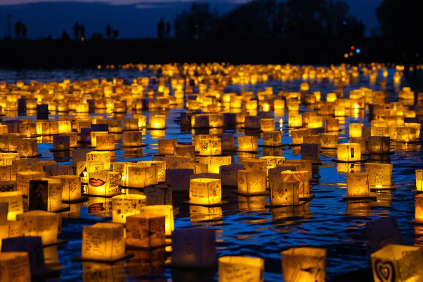 Hamilton water lantern festival, ontario events